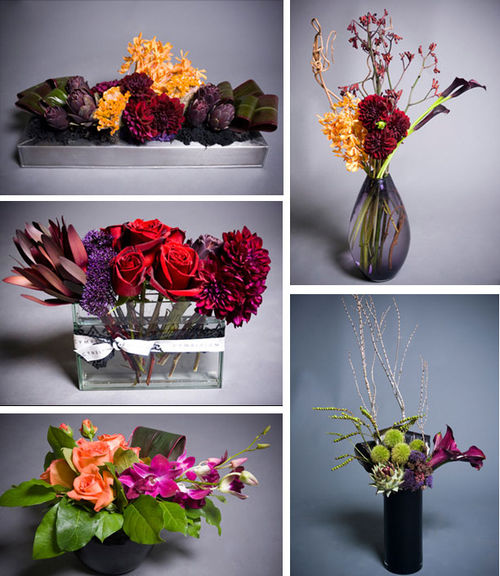 Cymbidium_fall08