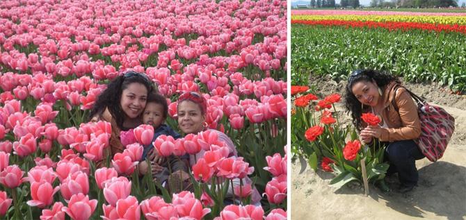 Tulipfestival1