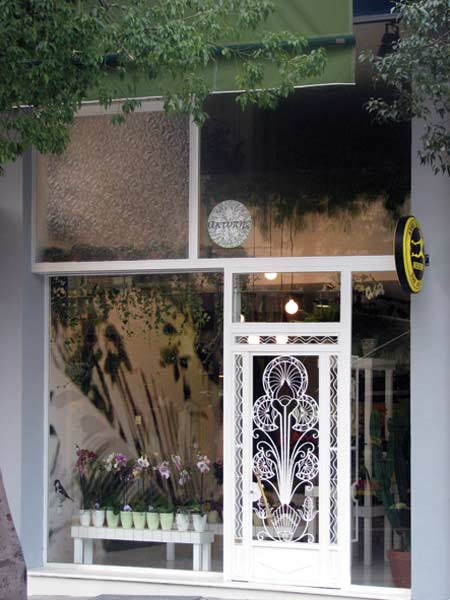 Aktipis flower shop in Greece6