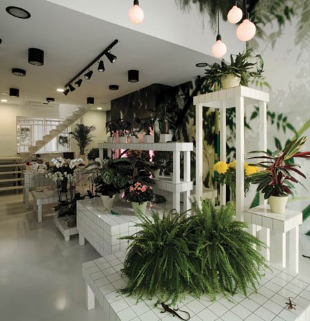 Aktipis flower shop in Greece4