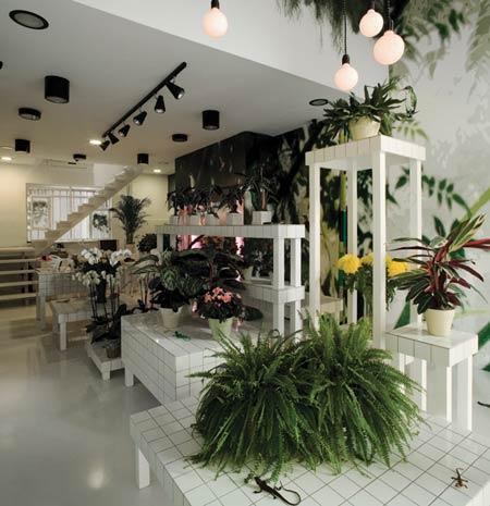 Aktipis flower shop in Greece4