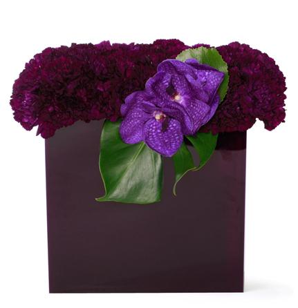 Violet carnation box