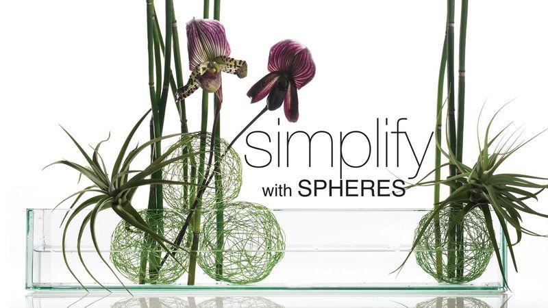 SimplifyWithSpheres