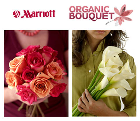 Organicbouquet_marriott_2
