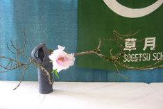 Ikebana_sog80_2