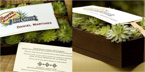 Succulentinvite