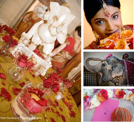 India_elephant_wedding