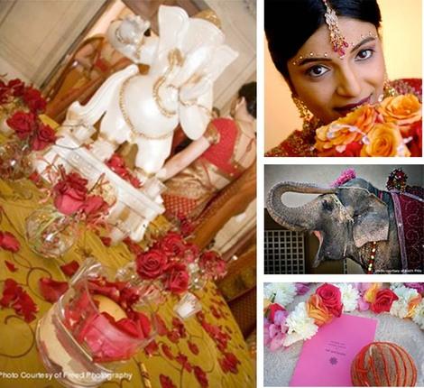 India_elephant_wedding