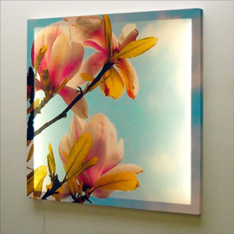 Blossom_wall_light